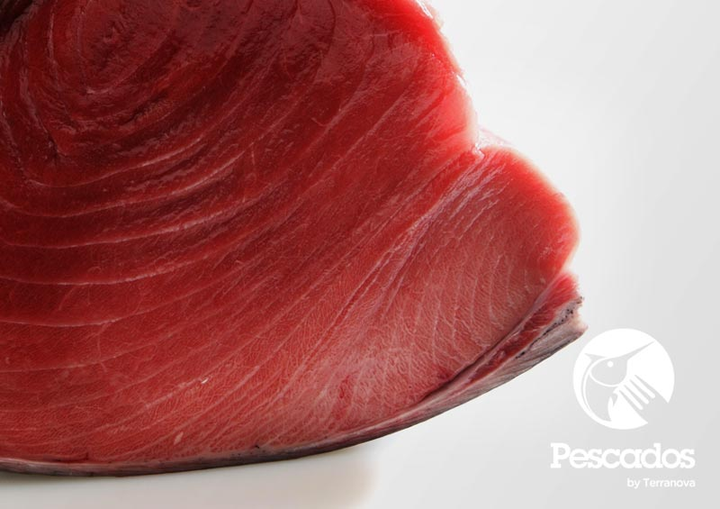 Terranova Fish