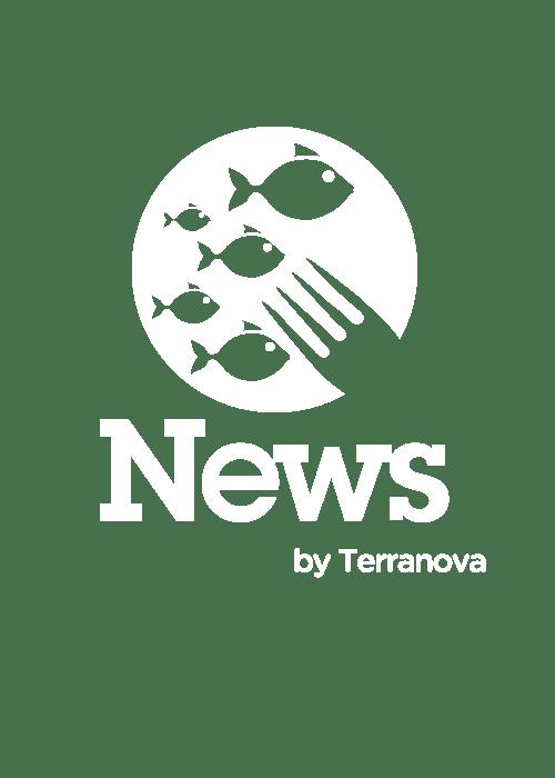 Terranova News
