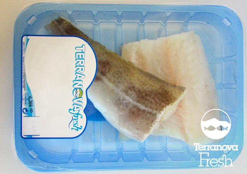 Terranova Fresh - Filete de pescado fresco
