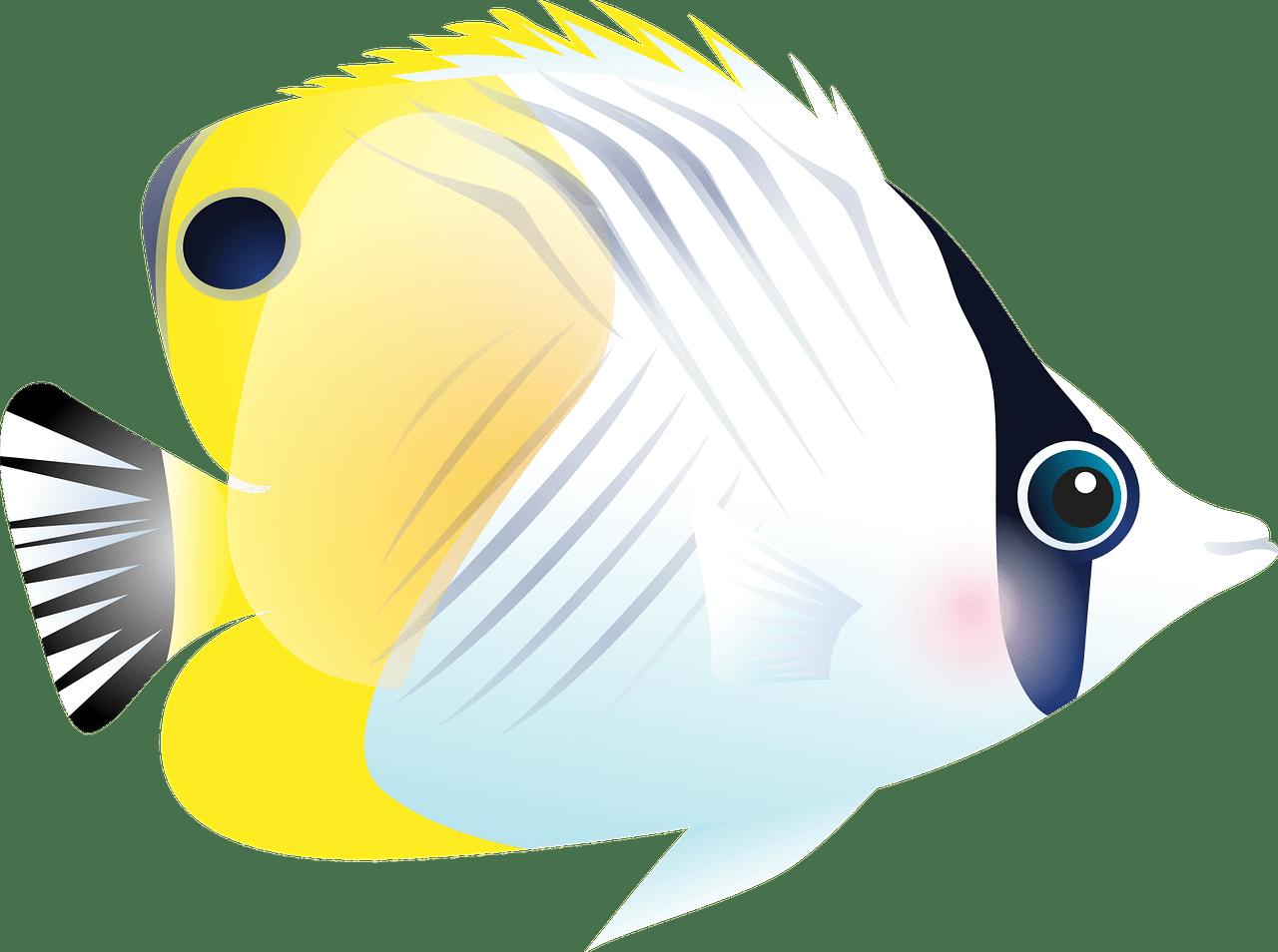 Ilustración de un pez mariposa