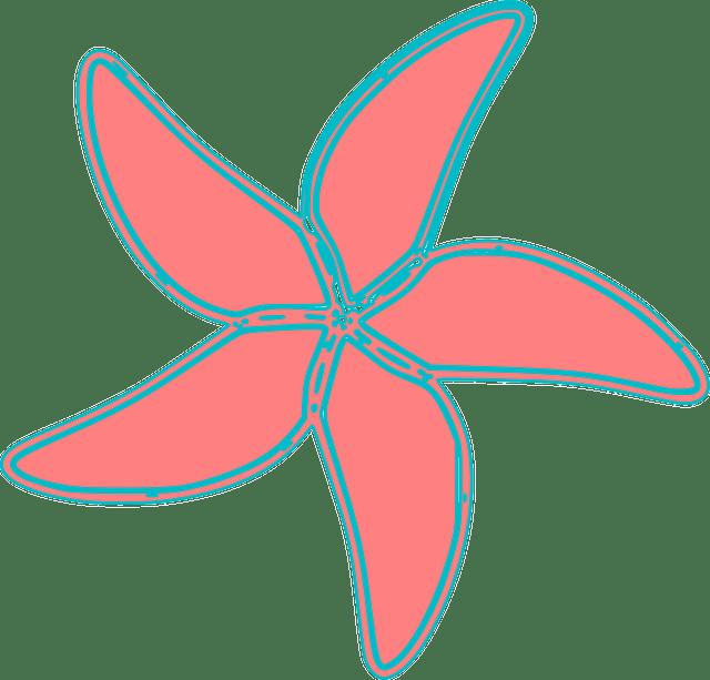 Ilustración de una estrella de mar