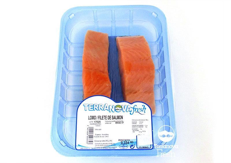 Terranova Fresh - Filete de salmón fresco