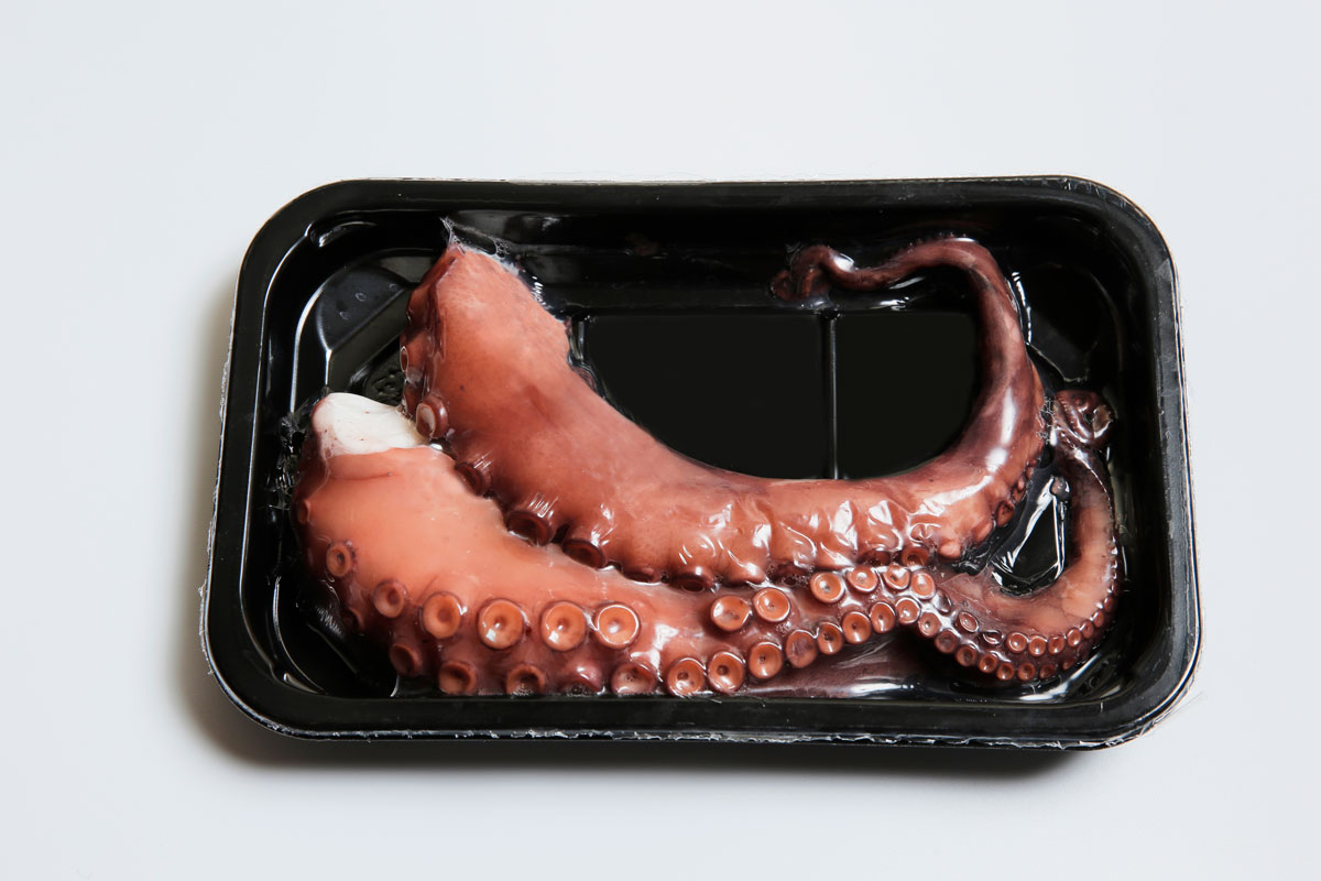 Terranova - Emballage de poulpe