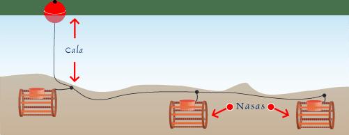 Ilustración de pesca nasas