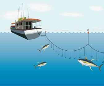 Ilustración de pesca palangre
